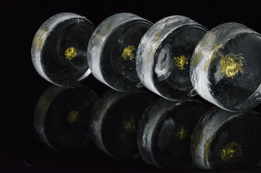 DSC_0278gold rings.jpg