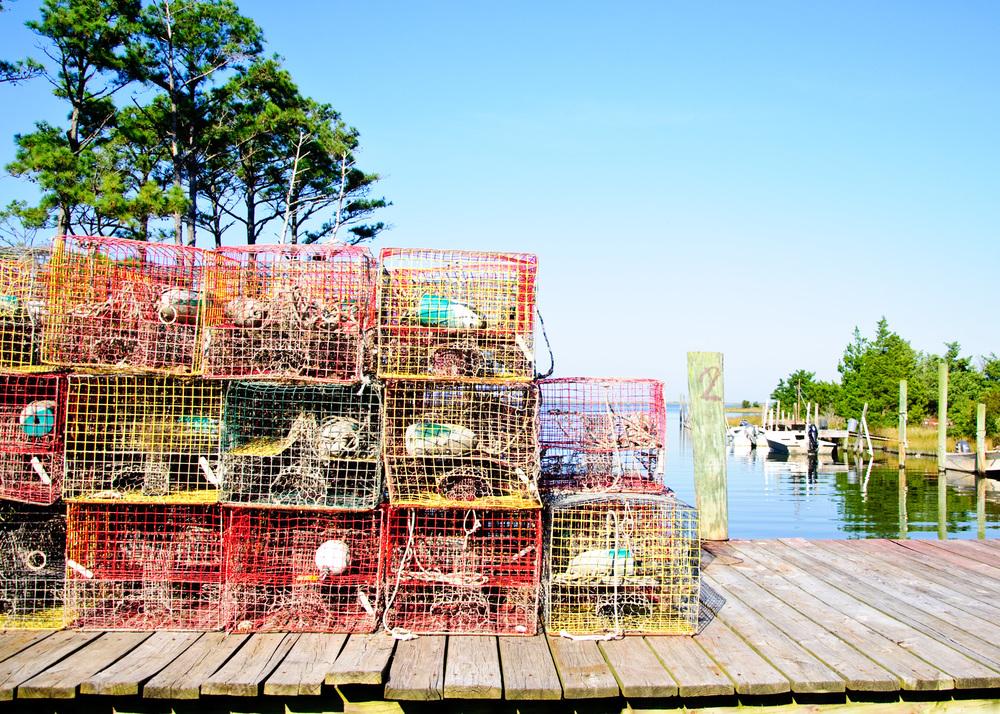 Aaron Styron fishhouse Cedar Island.jpg