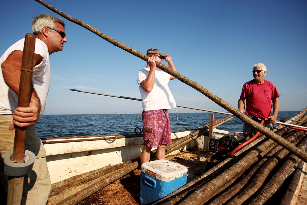 Fishing_pound net.JPG