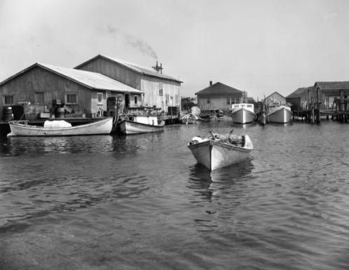 Ice Plant & Fish Dock, Cape Hatteras, 1945
