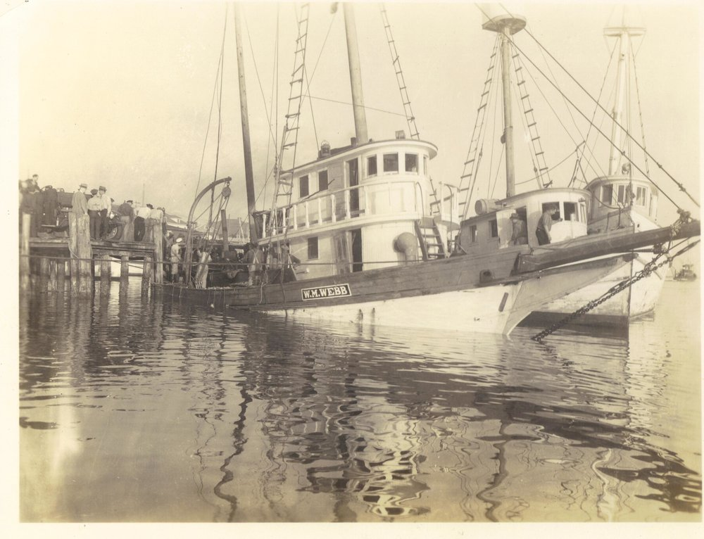 W.M. Webb Freight boat converted to menhaden vessel