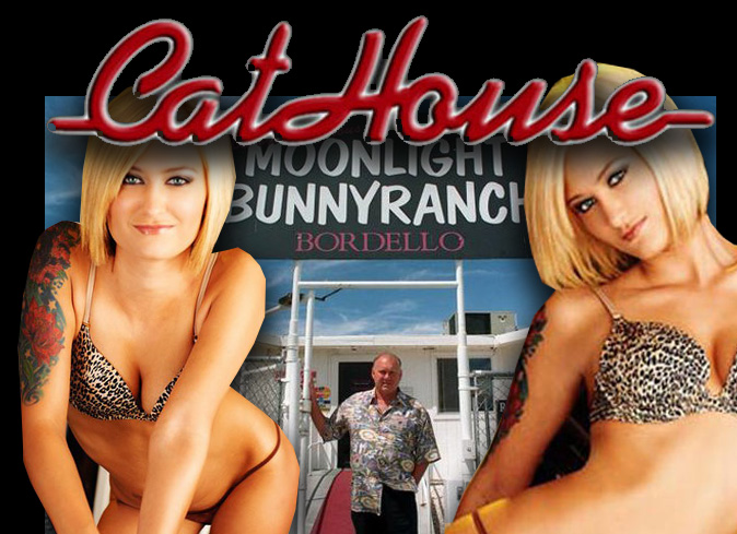 Brooke Phillips was often a featured legal prostitute in the HBO reality series 'Cathouse.'