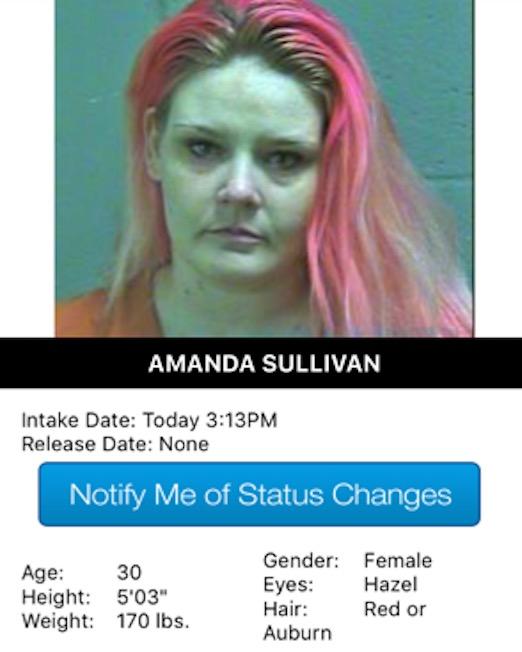 Sullivan Amanda Mugshot Prostitute 2017-10-13.jpg