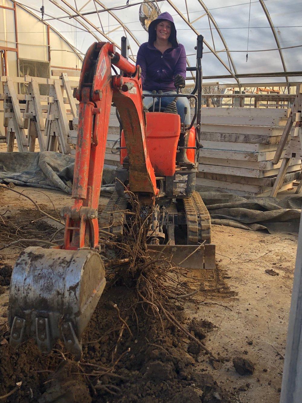 Greenhouse renovation