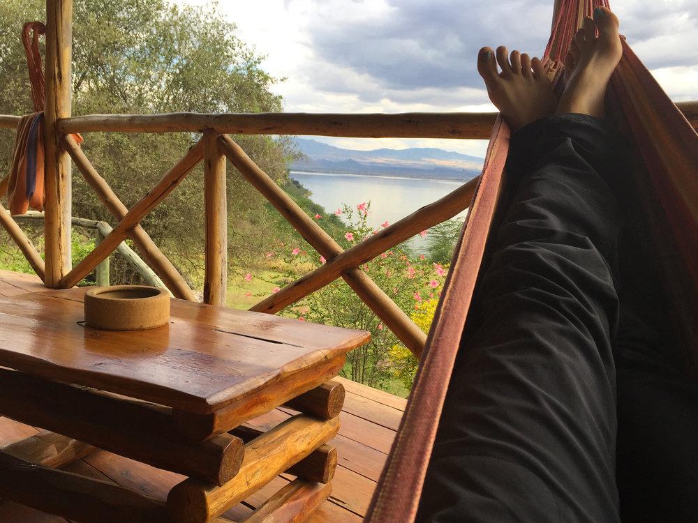 6 hammock.jpg