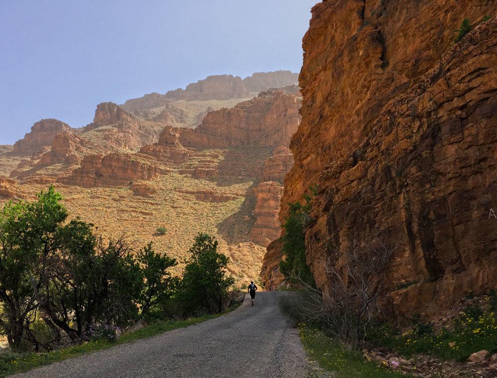 canyonrun2.jpg