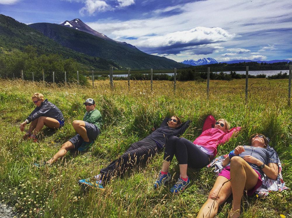 grass lounge.jpg