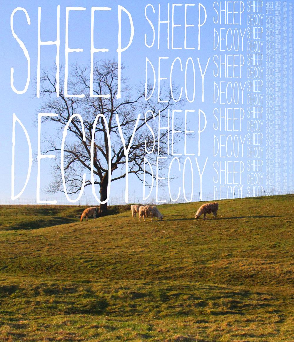 Sheep Decoy ARt 24.jpg