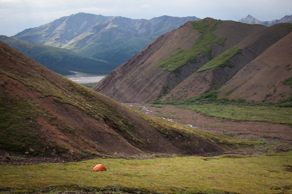 talia_galvin_Alaska (48 of 121).jpg