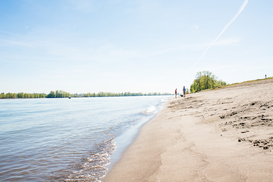 The Calm & Wild of Sauvie's Island