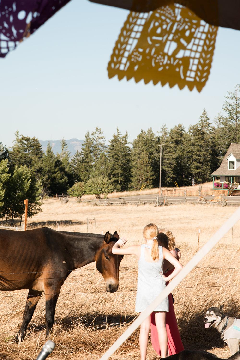 Lana Micah Wedding La Grande Oregon September 2018 Please Credit Talia Jean Galvin (374 of 687).jpg
