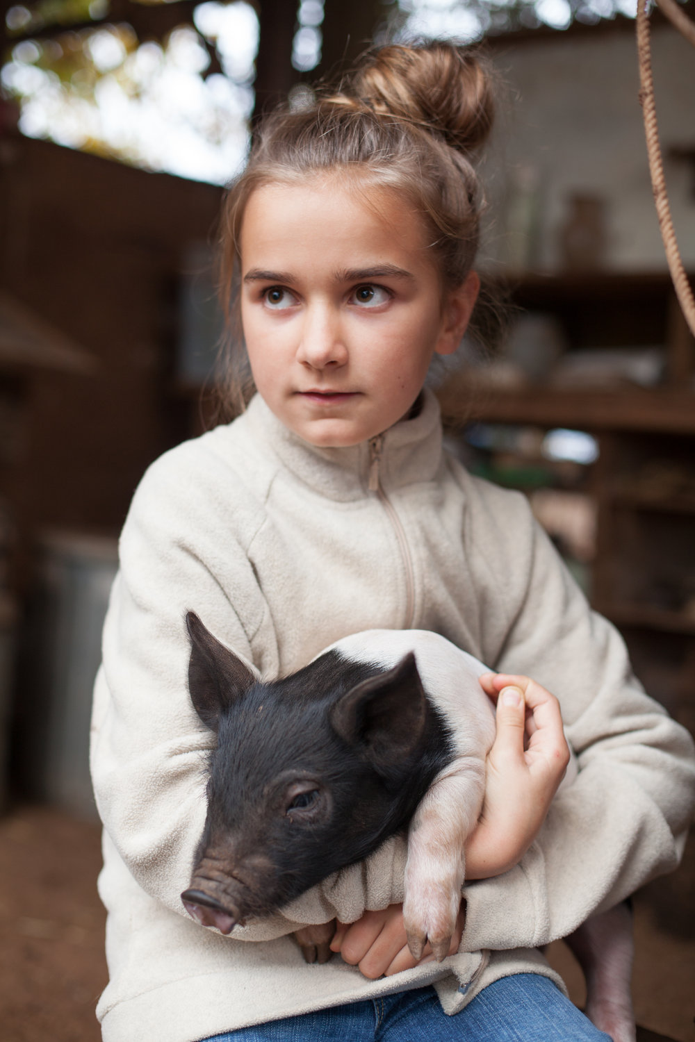 dundee_pigs_feature_worden_hilll_farm_talia_filipek-38 (3).jpg