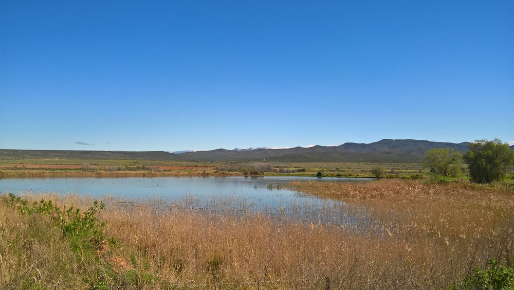 Oudtshoorn scenery from our bike ride