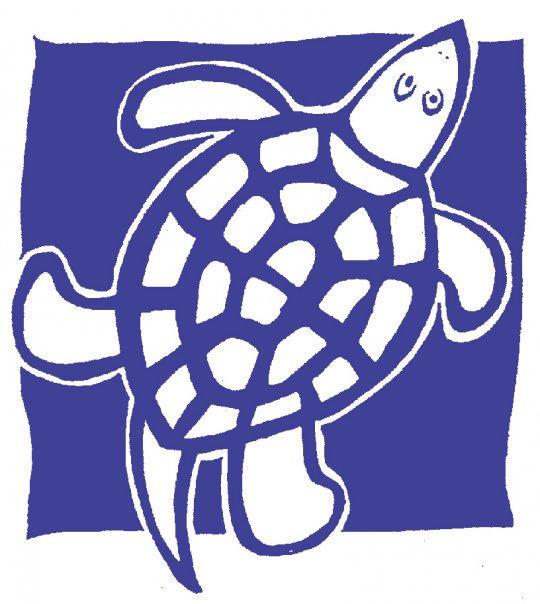 blue-turtle-toys.jpg