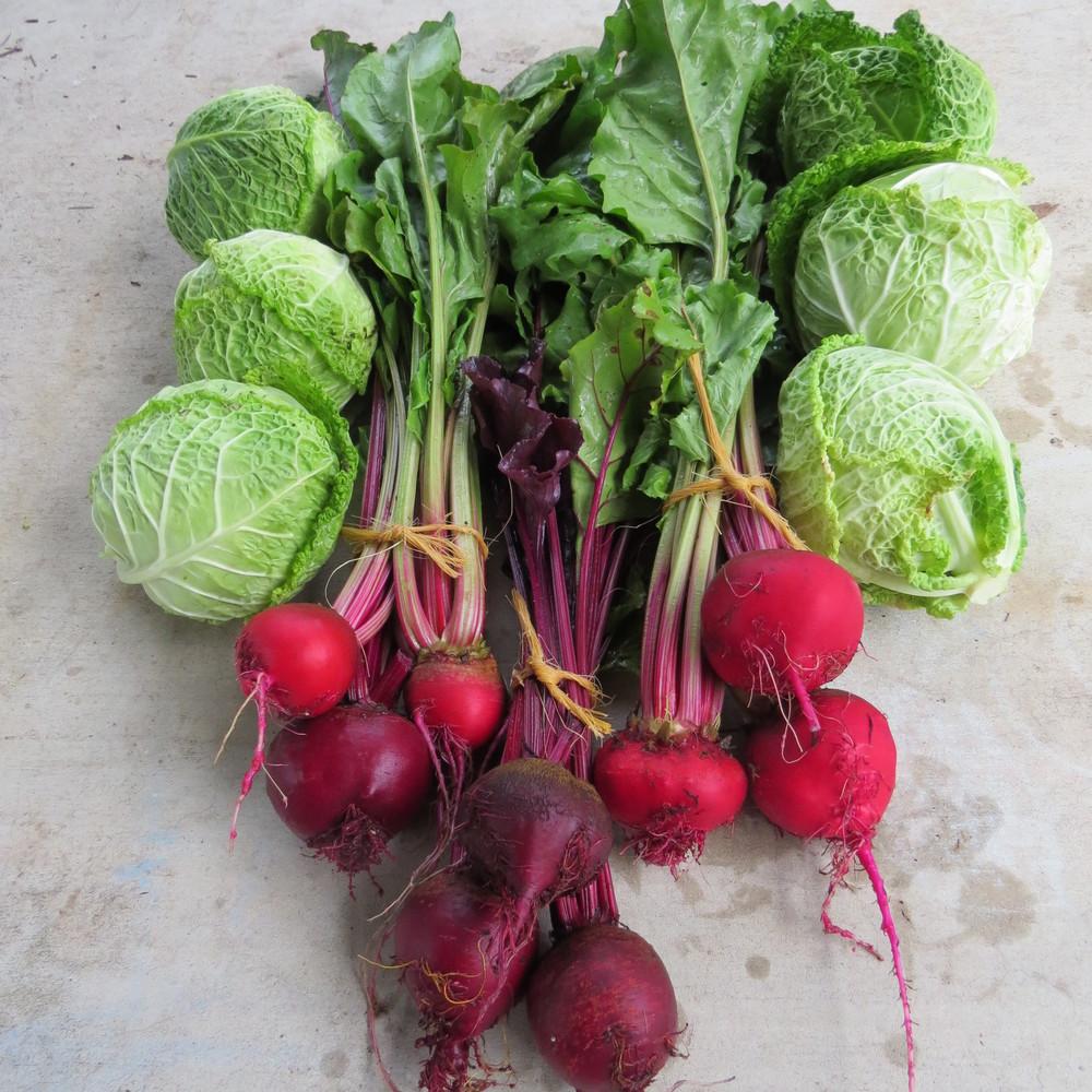 xmas and market food 010.JPG