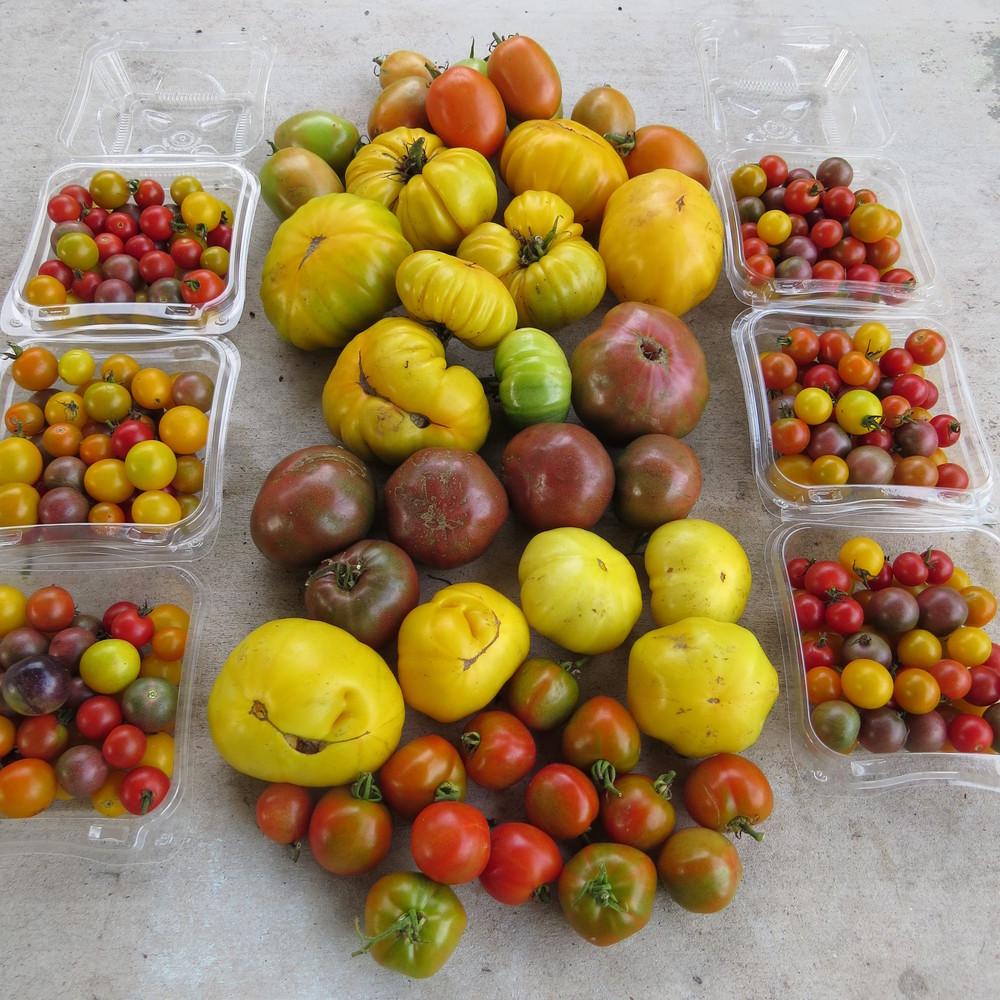xmas and market food 025.JPG