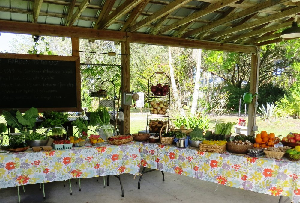 """When you come to the farm to shop, you won't see big crates filled with veggies or produce piled high. Our goal is to keep things as fresh as we can, so we only display small amounts at a time and keep the rest fresh, just for YOU! We chuckle when new people come to the farm and often say, """"Is this all you've got?"""". Somehow, they don't see that there are typically over 50 items either on our display tables and our coolers!"""