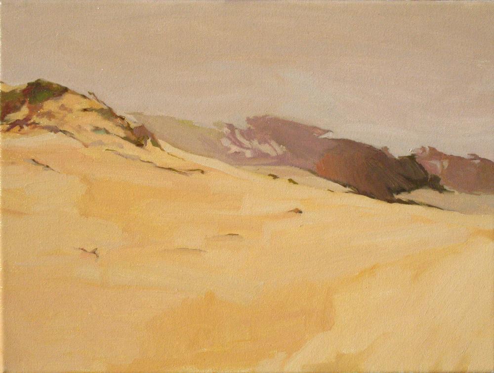 12 x16 06 14 12 misty dune.jpg