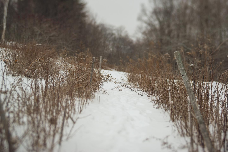 2015-recap-long-island-fine-art-portrait-photographer-travel-photography-snow-0003