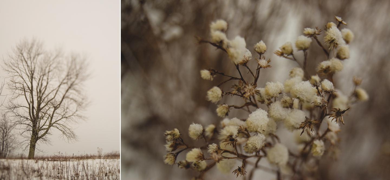 2015-recap-long-island-fine-art-portrait-photographer-travel-photography-snow-Collage 29