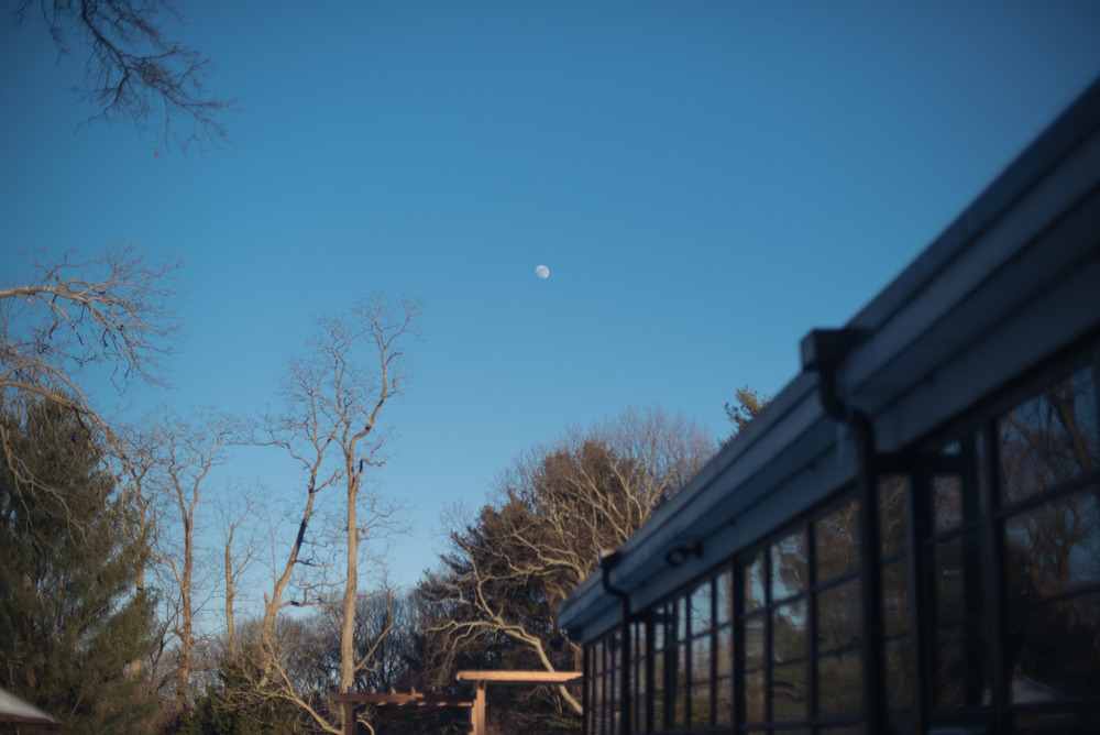 travel-photography-planting-fields-oyster-bay-winter-moon-long-island-ny-photographer-natural-light-digital.jpg