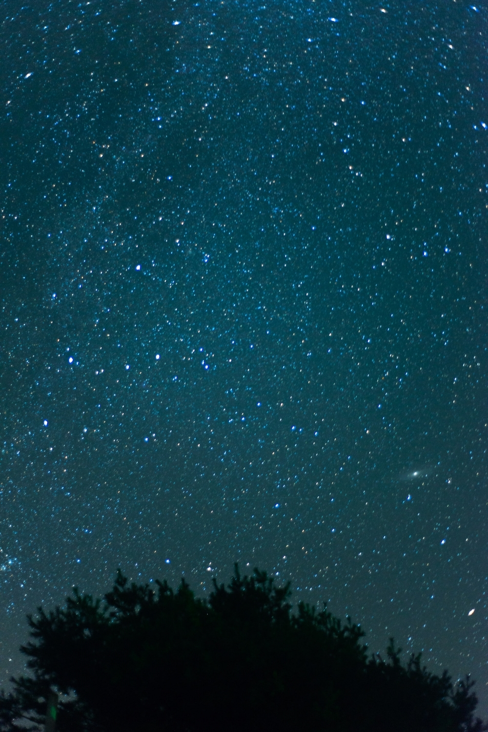 travel-photography-maine-night-stars-astro-landscape-photography-long-exposure-long-island-ny-photographer-natural-light-digital-55.jpg