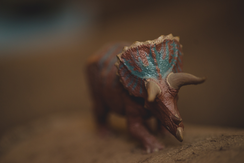 84_366-Dinosaur_macro_iii-011.jpg