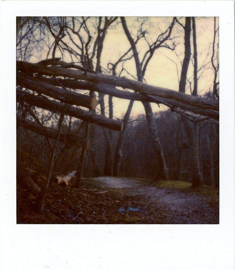 102_365-Trout_Pond_Noyac_NY_Polaroid-2.jpg