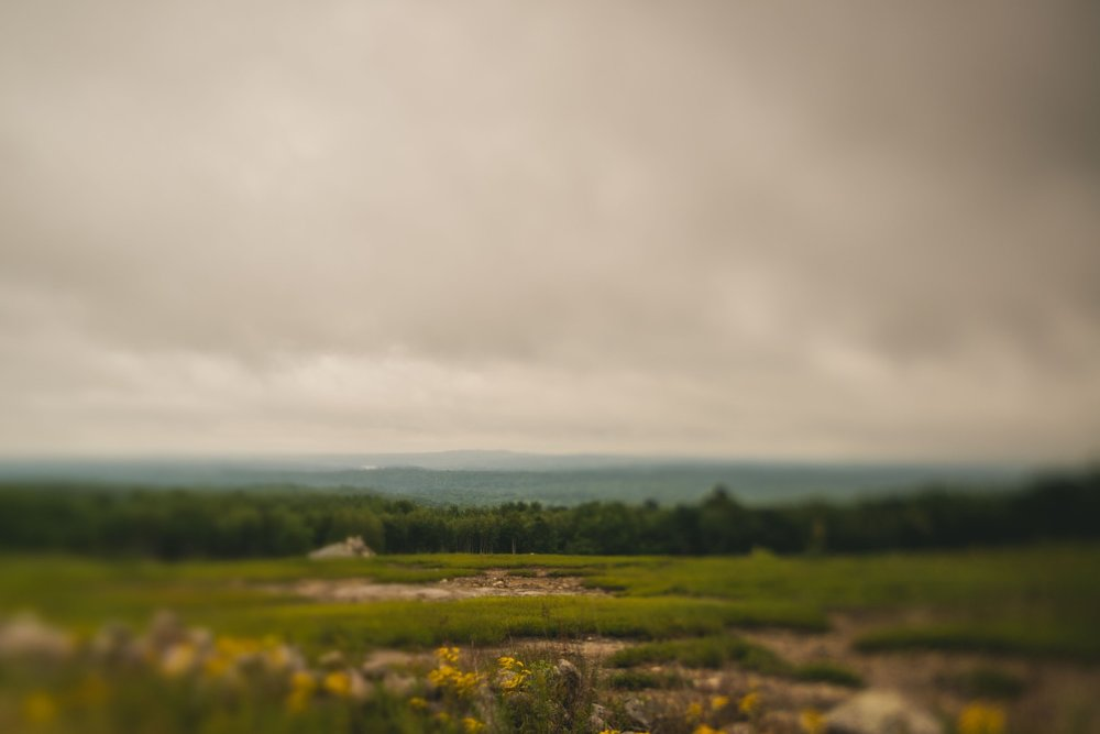 clarry_hill_trail_Maine-001.jpg