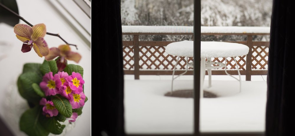 snow-long-island-lensbaby-edge-80-flowers1.jpg