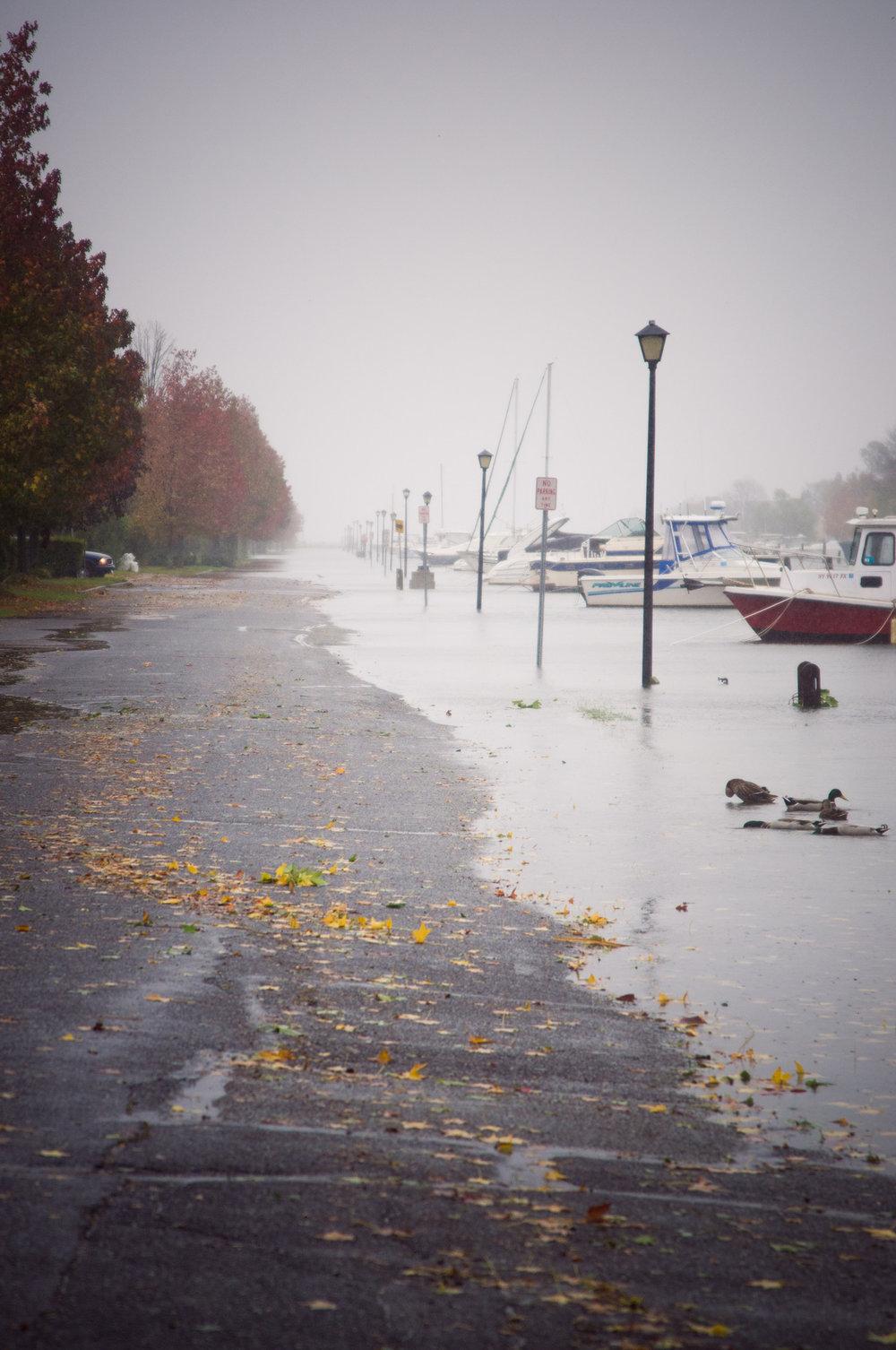 Bayshore, NY-Pre Sandy