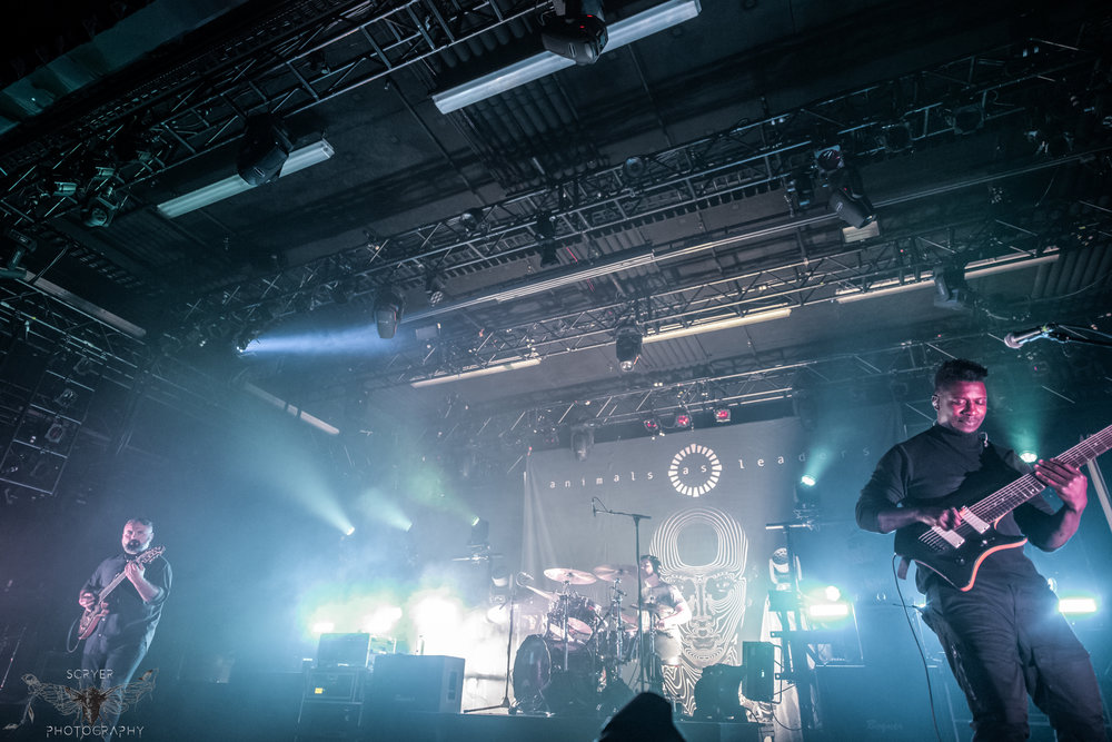 Animals As Leaders (FB,IG)-7.jpg