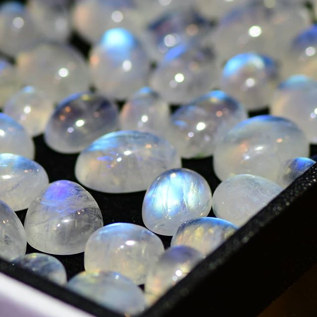 It's a sparkly sort of week, with the Sun blazing overhead, so here are some moonstones that will appreciate a little light shone upon them.  The blue effect that you see is known as adularescence (sometimes called schiller or shiller), and produces an illusion that the light is 'floating' on the stone. . . . #gemstone #gemstones #moonstone #gems #sparkly #Loupin #loupinjewels #gemhunt #gemhunting #moonstones #adularescence #schiller