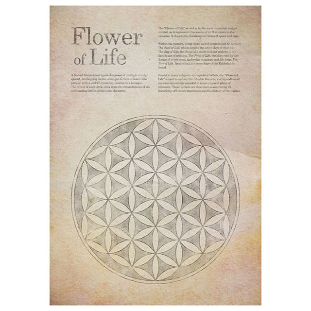 The Flower of Life contains the patterns of creation as they emerged from the Great Void.  After the creation of the Seed of Life the same vortex's motion continued, creating the next structure known as the Egg of Life. This structure forms the basis for music, as the distances between the spheres is identical to the distances between the tones and the half tones in music.  As the same structure further develops, it creates the human body and all of the energy systems – by connecting the intersections of the Flower of Life, the sacred geometry of the Platonic Solids present themselves, to create the Merkabah.
