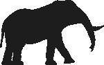 Elephant-Regular(150).png