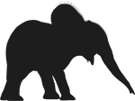 Baby-Elephant-2(150).png
