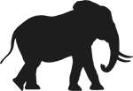 Elephant-Regular2(150).png