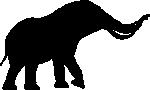 Elephant-Fight(150)-Black.png