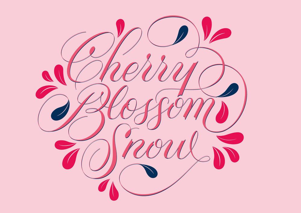 caseyschuurman_CBS lettering_pink.jpg