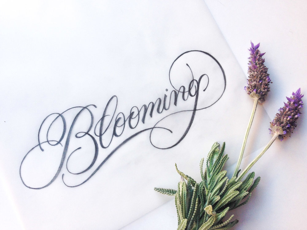 Blooming_CaseySchuurman.jpg