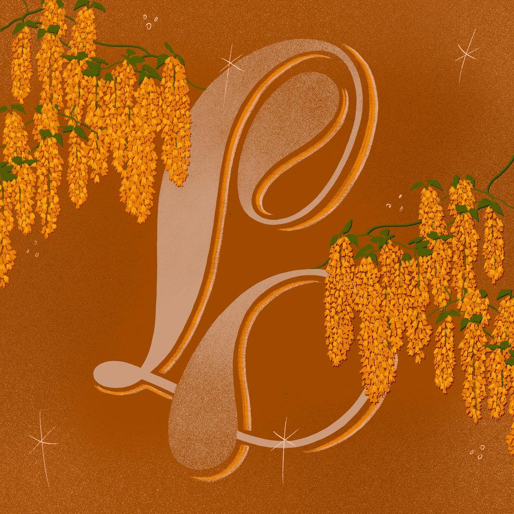 L is for Laburnam