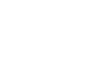 Quizlyse