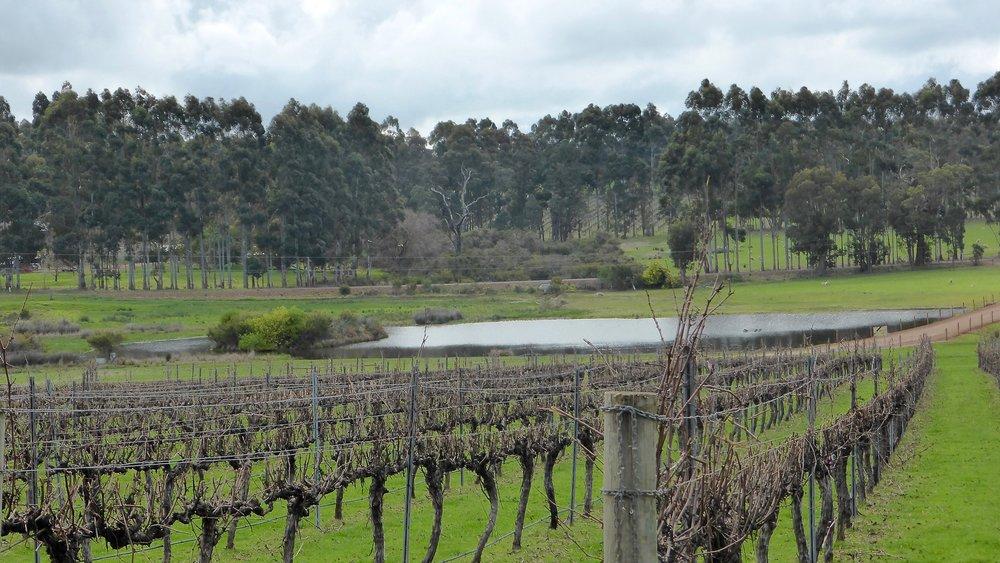 Brookwood, Margaret River, Western Australia - @acrosslandsea