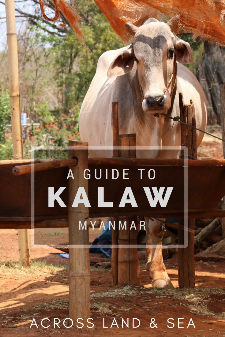 Kalaw (1).png