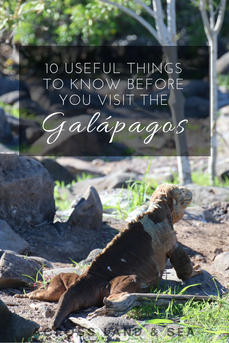 10 useful things to know before you visit the Galapagos