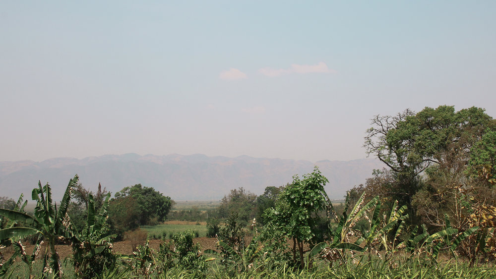 The View from Bamboo Hut restaurant, near Inle Lake, Myanmar