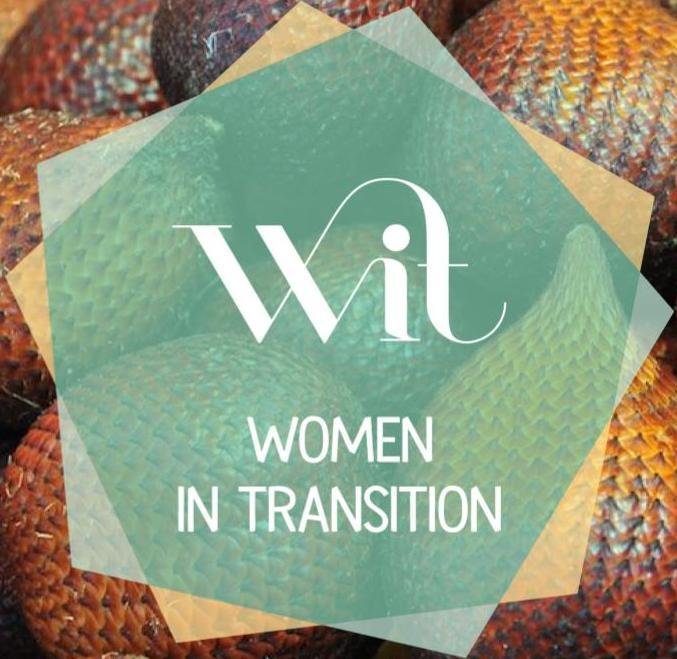 logo WIT.jpg