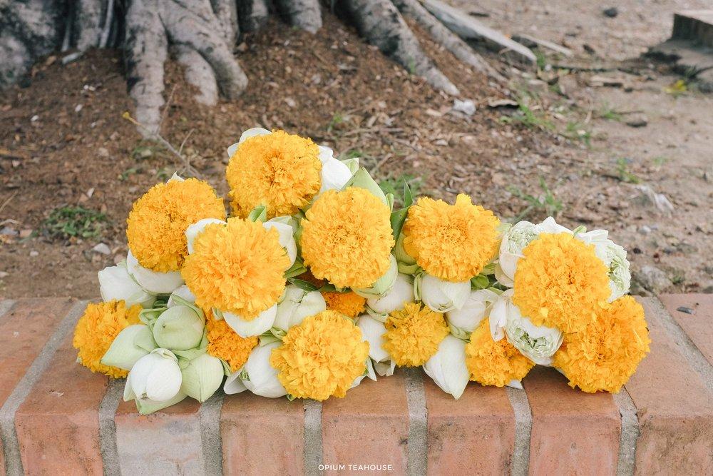 OTH - THL - Ayutthaya.jpg