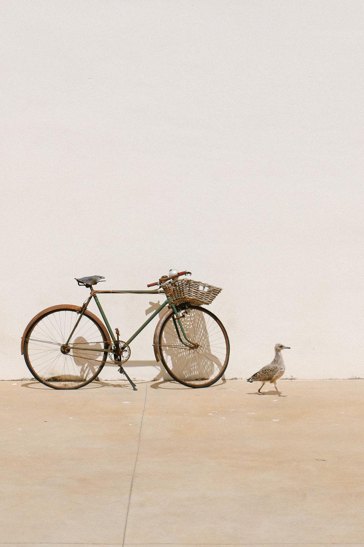 Bicyle BCN — OTH.jpg
