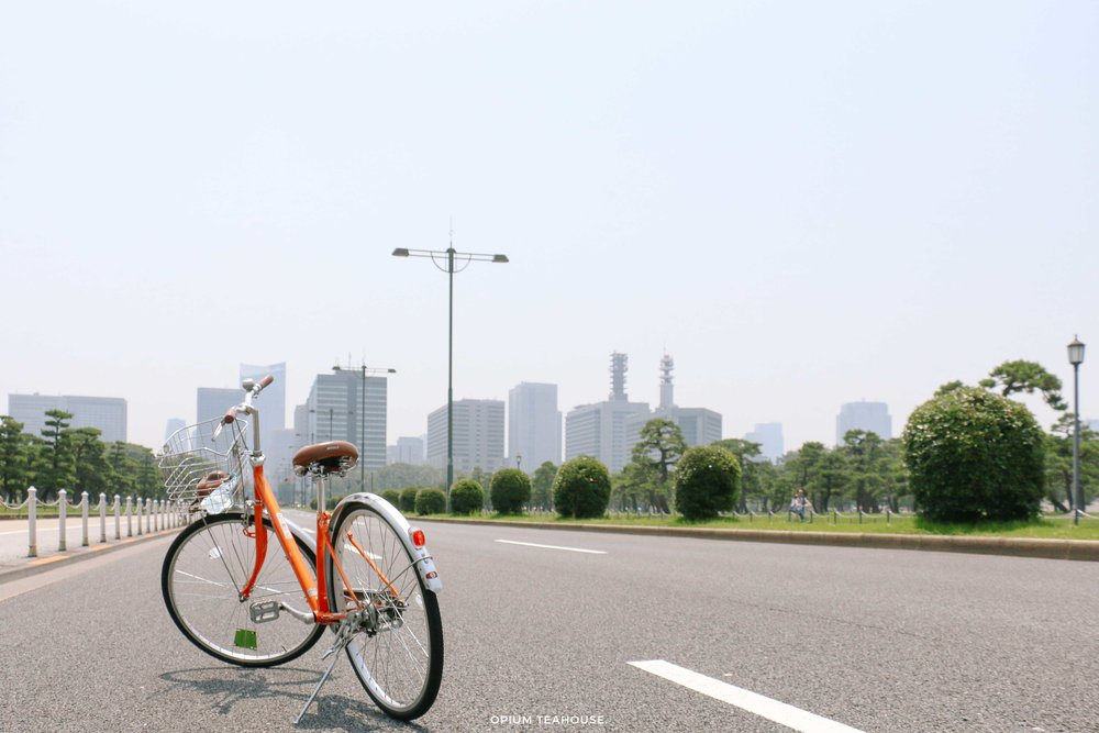 Imperial Palace Sunday Bike Ride — OTH